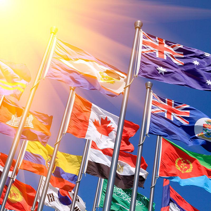 Elige tu bandera
